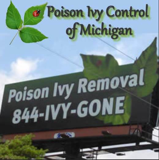Poison Ivy Removal Service in Michigan